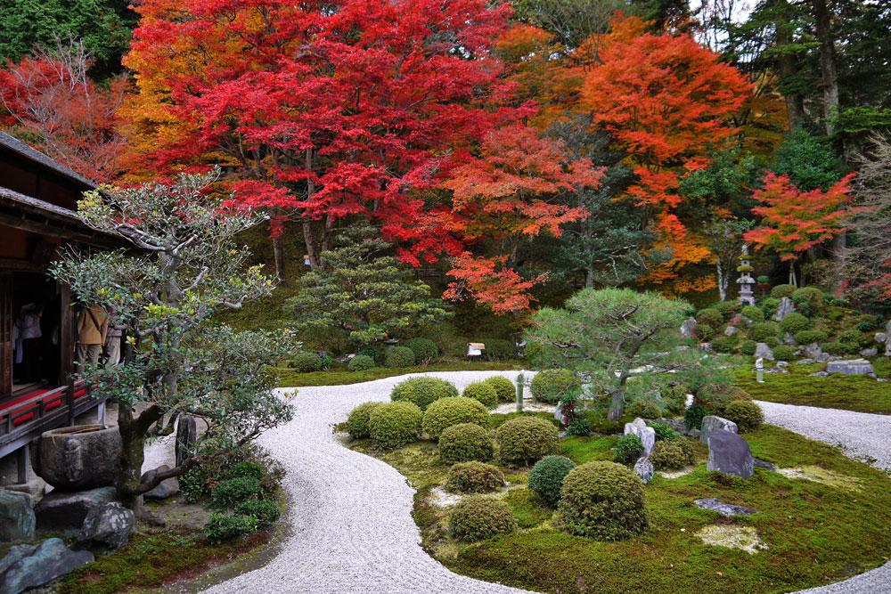 秋の京都の紅葉
